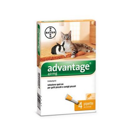advantage 40