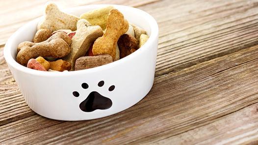 animaux en nourriture