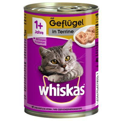 chat whiskas