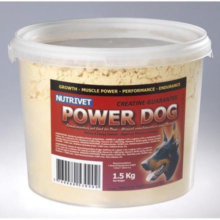complement alimentaire pour chien