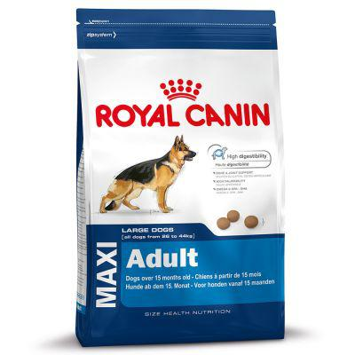 croquette royal canin adulte