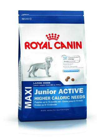 croquette royal canin maxi junior
