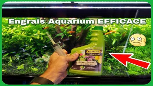 engrais aquarium