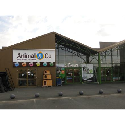 magasin d animaux