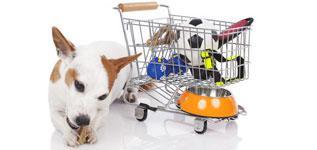 magasin d articles pour animaux