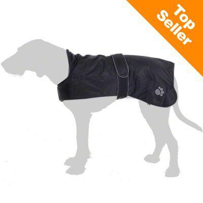 manteau chien