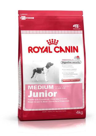 medium junior royal canin