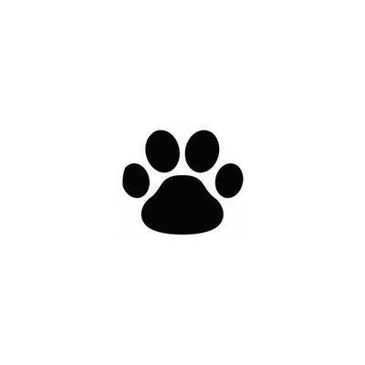 pate de chien