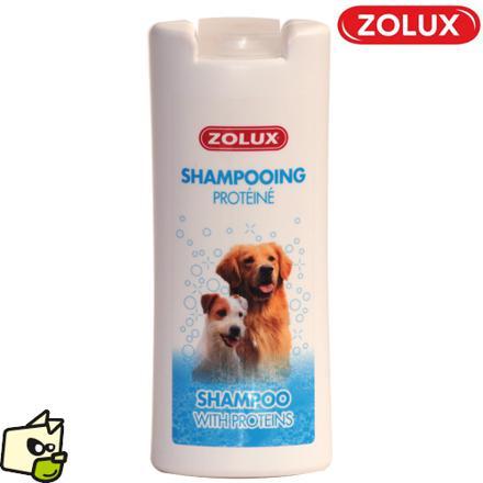 shampoing chien