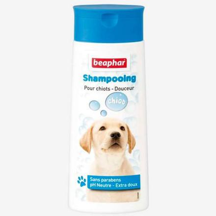 shampoing pour chiot